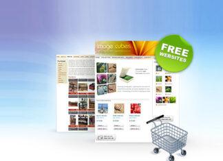 ecommerce website for online shopping