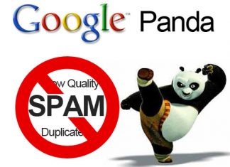 seo tips to beat Google Panda